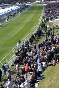Chester racecourse 2
